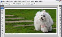 Photoshop 教學 - 海棉工具 - 修掉髒髒泛黃的色彩