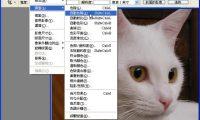 Photoshop 教學 - 如何正確使用 「自動色彩校正選項」