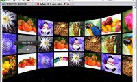 好站分享 flashmo.com 有 270 個以上 ActionScrpt 範例下載