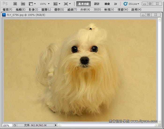 Photoshop 後製修圖  - Photoshop 教學 - 校正色彩 - 仿自動白平衡 - 速成篇 - fly01_thumb