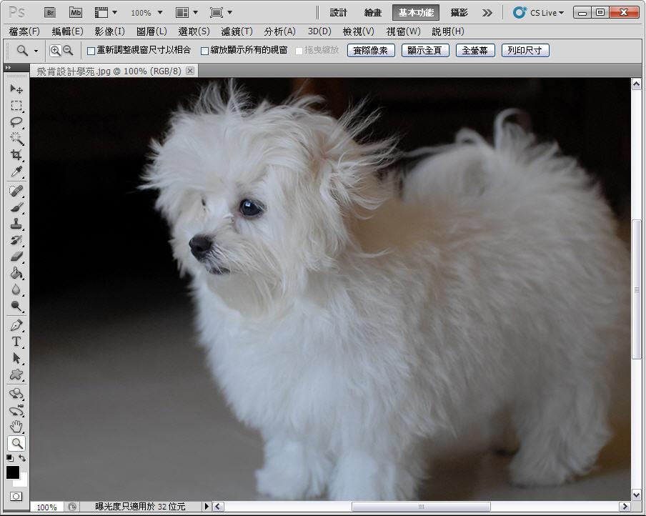 Photoshop 影像設計  - 【Photoshop 後製修圖教學】 自動色調,自動對比,自動色彩。 - fly-001