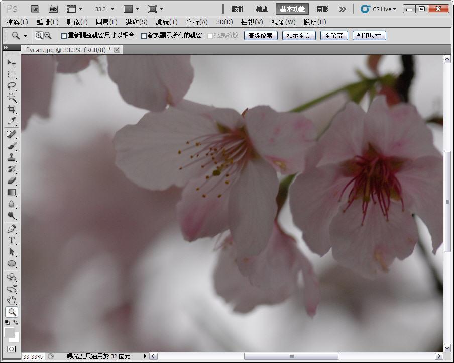 Photoshop 後製修圖  - 【 Photoshop 後製修圖教學】 拍好櫻花的後製技巧 - fly-0