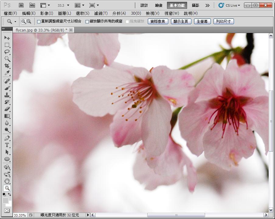 Photoshop 後製修圖  - 【 Photoshop 後製修圖教學】 拍好櫻花的後製技巧 - fly-ok