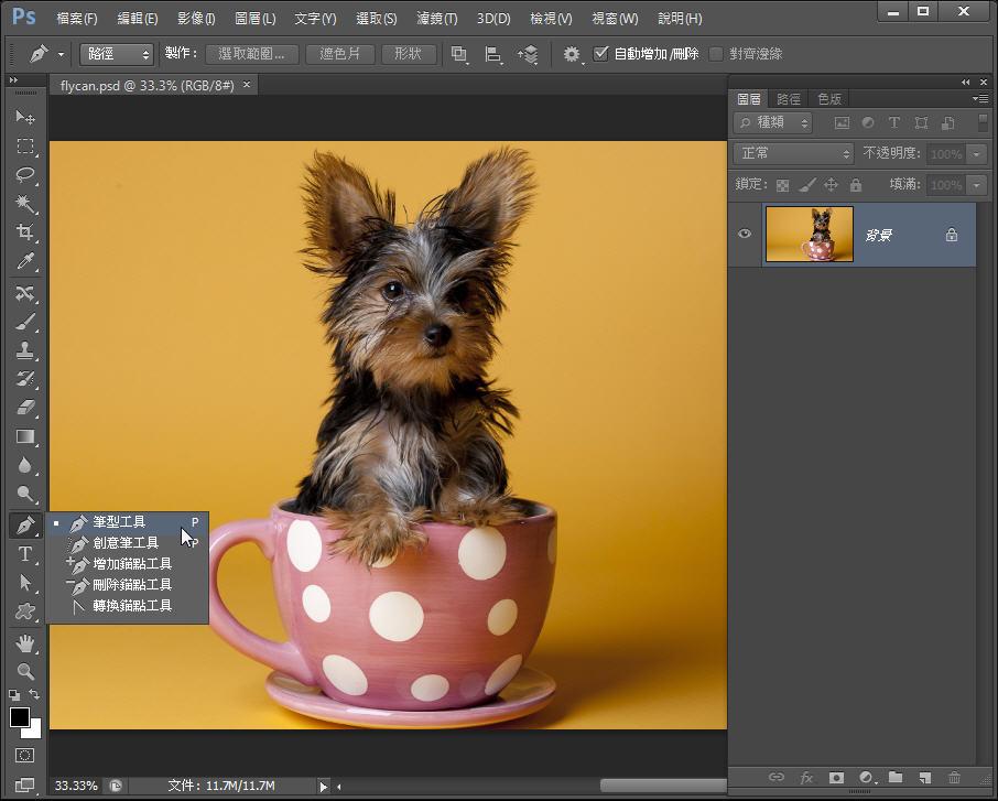 Photoshop 影像設計  - Photoshop 教學 – 色版工具 –動物毛髮去背 - fly-011