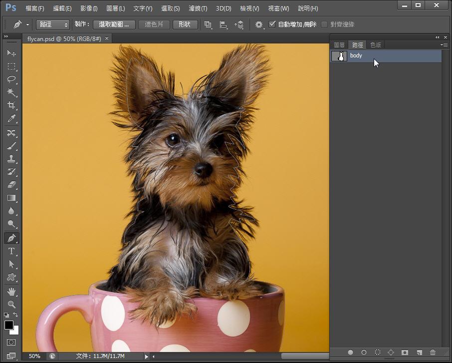 Photoshop 影像設計  - Photoshop 教學 – 色版工具 –動物毛髮去背 - fly-022