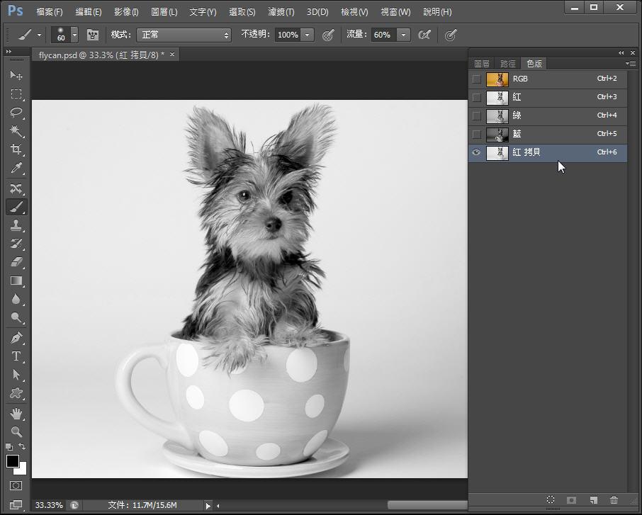 Photoshop 影像設計  - Photoshop 教學 – 色版工具 –動物毛髮去背 - fly-112