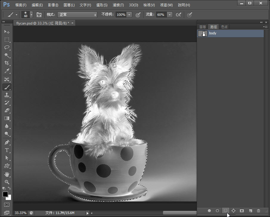 Photoshop 影像設計  - Photoshop 教學 – 色版工具 –動物毛髮去背 - fly-142