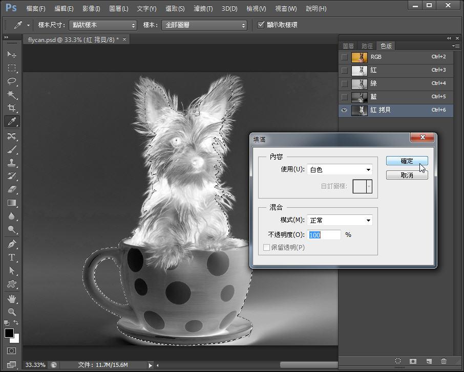 Photoshop 影像設計  - Photoshop 教學 – 色版工具 –動物毛髮去背 - fly-152