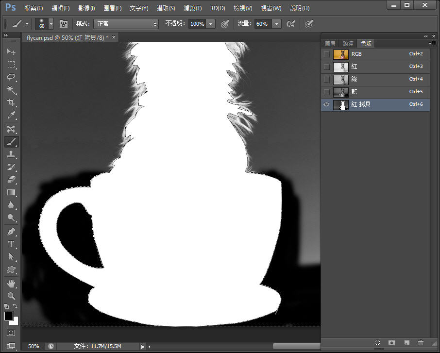 Photoshop 影像設計  - Photoshop 教學 – 色版工具 –動物毛髮去背 - fly-172