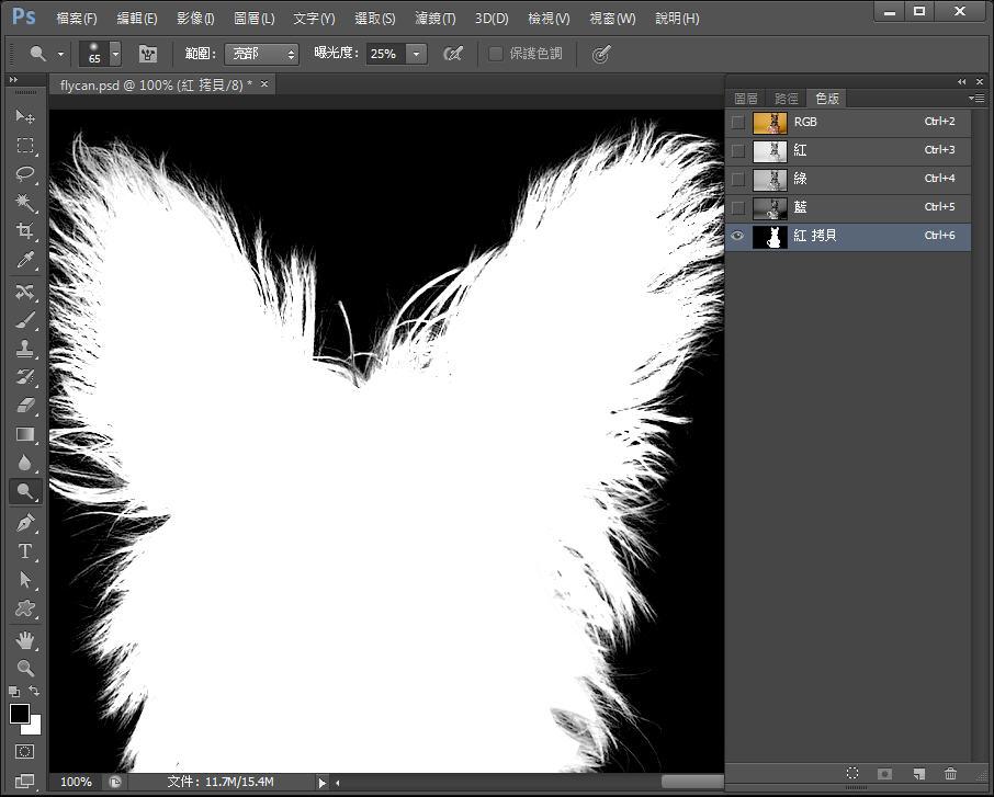 Photoshop 影像設計  - Photoshop 教學 – 色版工具 –動物毛髮去背 - fly-231