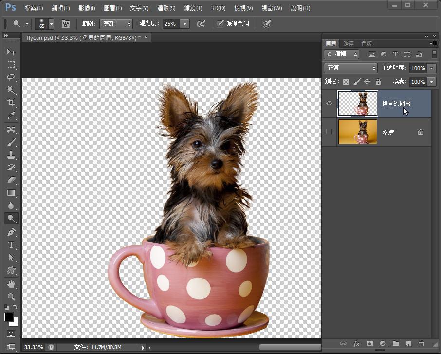 Photoshop 影像設計  - Photoshop 教學 – 色版工具 –動物毛髮去背 - fly-261