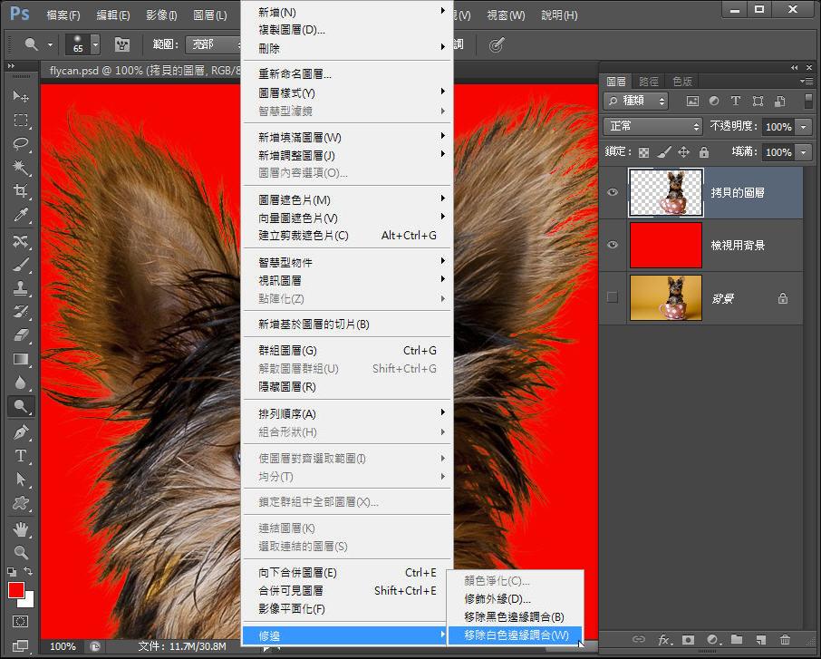 Photoshop 影像設計  - Photoshop 教學 – 色版工具 –動物毛髮去背 - fly-27-1