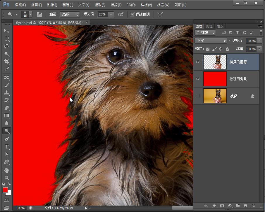 Photoshop 影像設計  - Photoshop 教學 – 色版工具 –動物毛髮去背 - fly-311