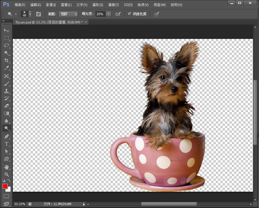 Photoshop 影像設計  - Photoshop 教學 – 色版工具 –動物毛髮去背 - fly-331
