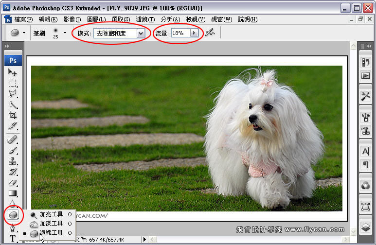 Photoshop 後製修圖  - Photoshop 教學 - 海棉工具 - 修掉髒髒泛黃的色彩 - color_00_407