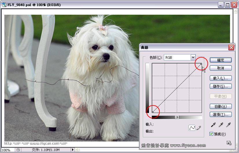 Photoshop 影像設計 Photoshop 後製修圖  - Photoshop 教學 - 曲線 - 亮度調整 - 入門篇【一】 - curve_01_197
