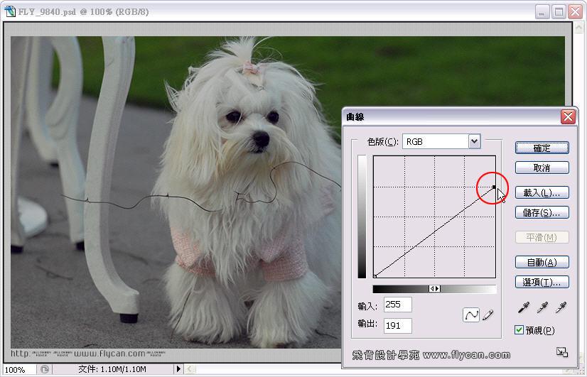Photoshop 影像設計 Photoshop 後製修圖  - Photoshop 教學 - 曲線 - 亮度調整 - 入門篇【一】 - curve_02_148