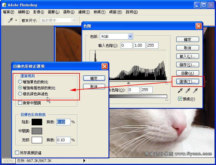 Photoshop 影像設計 Photoshop 後製修圖  - Photoshop 教學 - 如何正確使用 「自動色彩校正選項」 - fly_01_211