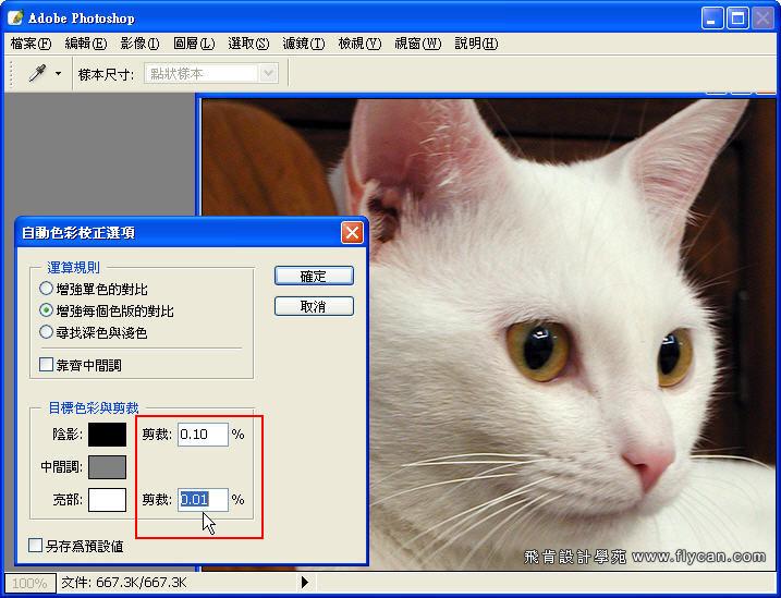 Photoshop 影像設計 Photoshop 後製修圖  - Photoshop 教學 - 如何正確使用 「自動色彩校正選項」 - fly_02_595