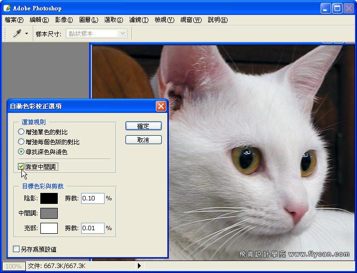Photoshop 影像設計 Photoshop 後製修圖  - Photoshop 教學 - 如何正確使用 「自動色彩校正選項」 - fly_03_408