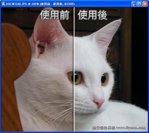 Photoshop 影像設計 Photoshop 後製修圖  - Photoshop 教學 - 如何正確使用 「自動色彩校正選項」 - fly_04_103