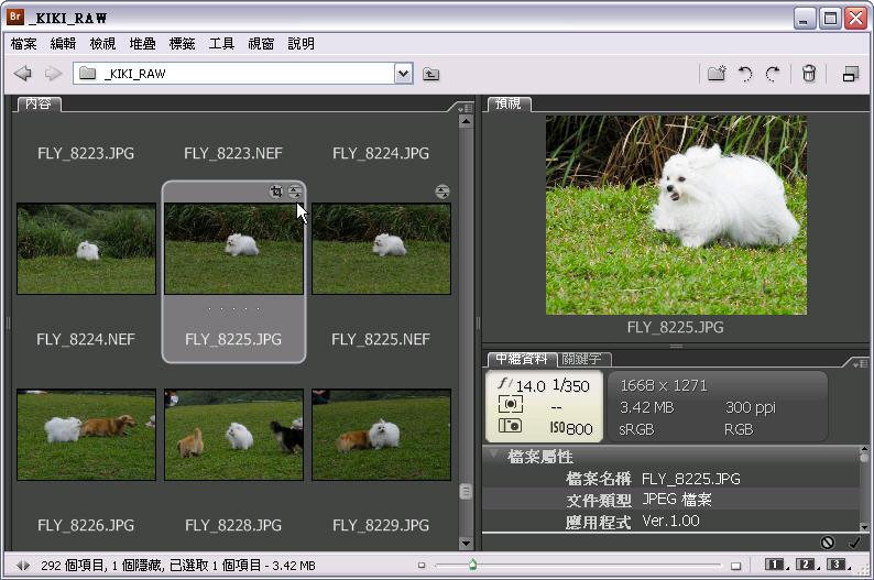 Photoshop 後製修圖  - Camera Raw 後製教學 - 非破壞性後製與存檔模式 - camera_raw_03