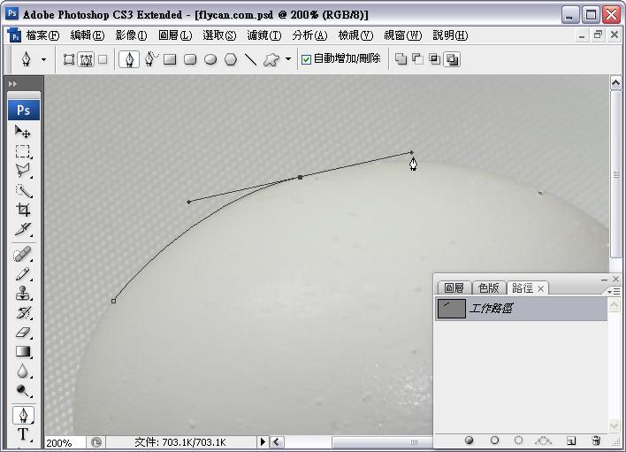 Photoshop 影像設計  - Photoshop 去背教學 - 「筆型工具」「路徑」去背 - 入門篇 - path-02