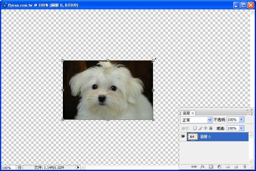 Photoshop 影像設計  - 初探 Photoshop 智慧型物件 - 圖片連續縮放 - 不失真 - 1_499687318a0b7